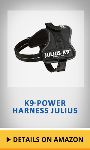 K9 powerharness Julius featured